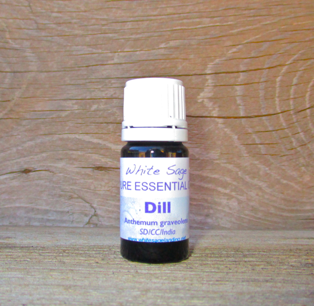 Dill Essential Oil 5 ml