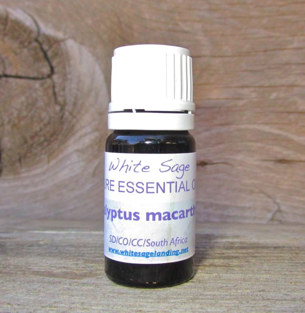 Eucalyptus Macarthurii Essential Oil 5ml