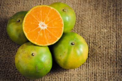 green mandarin essential oil 2