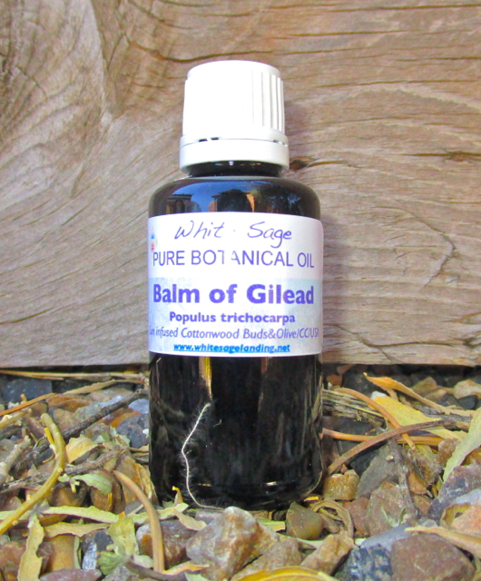 Balm of Gilead 30ml