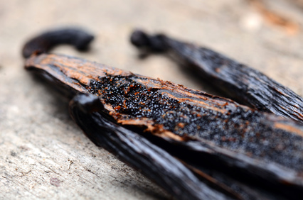 vanilla-maceration-botanical-oil